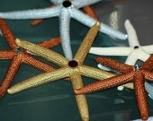 Swarovski and Starfish Ornaments and Party Favors