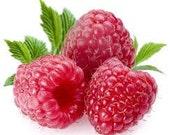 6 Pack Raspberry Peach Soy Votives