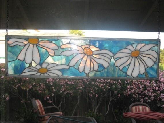 Myriads of daisies