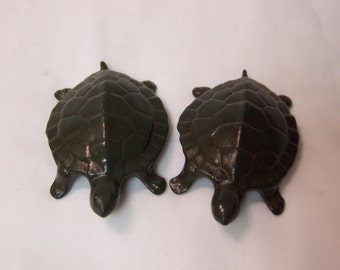 Mr and Mrs Turtle