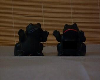 Mr & Mrs. Horney Toads