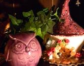 OWL   Ceramic  Glazed  Grape purple ...Owlet
