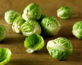 Organic Long Island Improved Brussels Sprouts Heirloom Vegetable Seeds