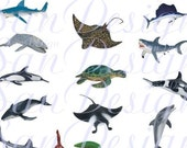 Sea Life Digital Collage Sheet, dolphin. whale, sea turtle, squid, octopus, eel, stingray No. 118