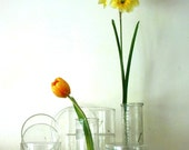scientific set of petri dishes covers misc science bowls and bottles