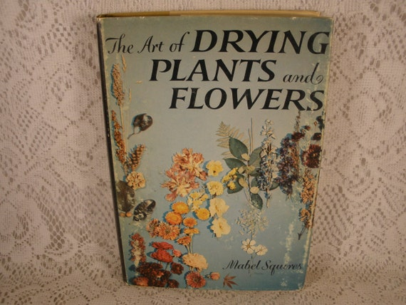 The Art of DRYING PLANTS and FLOWERS by Mabel Squires - Vintage Hardback Book with Dust Jacket