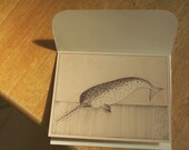 Narwhal Card and Envelope