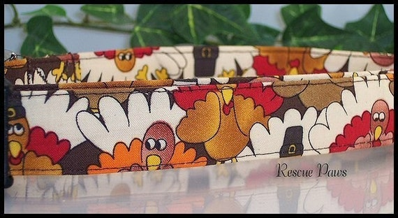 Rescue Paws Custom Dog Collar  .  . . LET's TALK TURKEY . . . Thanksgiving