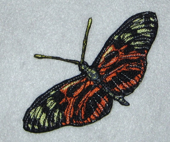 Lovely life Sized Tiger Longwing Butterfly Heliconius numata  Insect  Steam Punk Iron on Patch