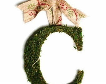 Moss Covered Christmas Wedding Door Wreath 8 inch