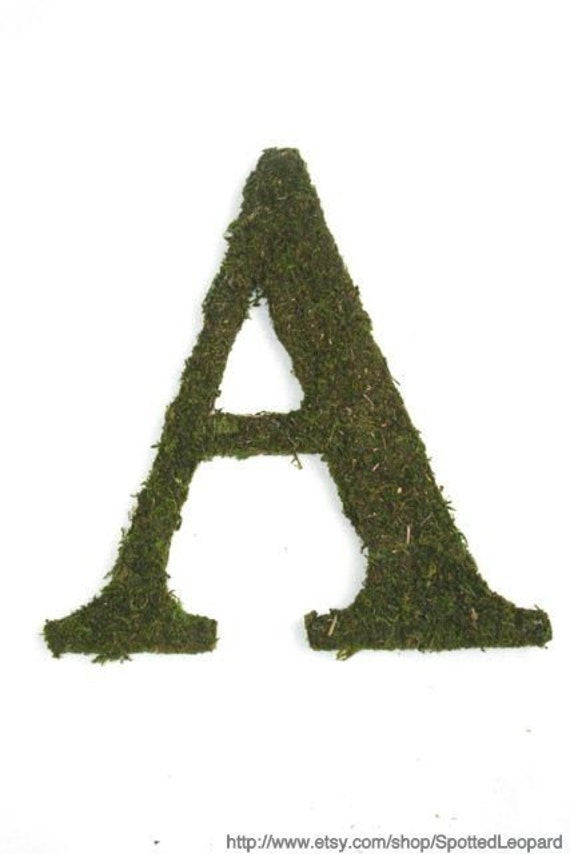 Moss Covered 12 inch Letter, Initial, Monogram Wedding Door Wreath