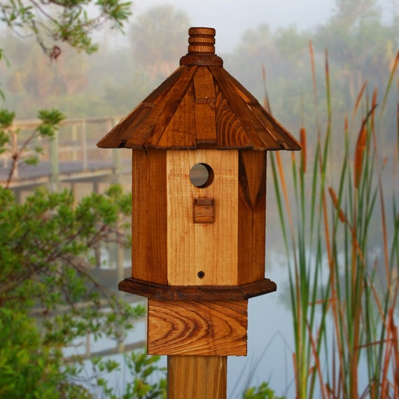 Bluebird House  Stain and Shake Mountain Living Decor