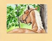ORIGINAL ACEO MINI ART PALOMINO HORSE
