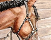 ACEO original acrylic art, bay horse looking out of barn with halter