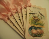 Bird Nest and Egg Tags - French - Set of 6