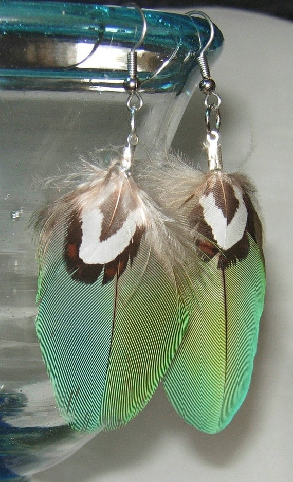 Feather Earrings - Greenwing Macaw - Pair a