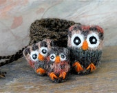 Owl Nugget Family in their brown nest that turns into a carrying bag kids toy... eco friendly wool  (woolcrazy)