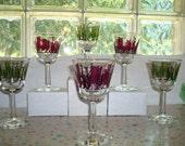 Six Stemmed Cocktail Cordial Glasses 50s or 60s Beatnik