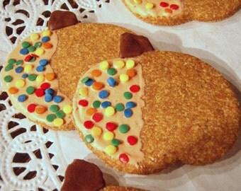 Gourmet Dog Treats - Pumpkin Cookies - Vegetarian Organic Dog Treats Pumpkin - Shorty's Gourmet Treats