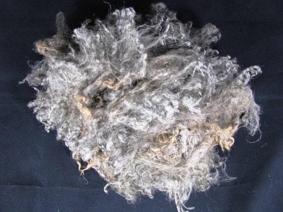Natural Gray Raw Wensleydale wool
