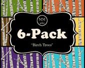 6-Pack - Birch Trees - GREETING CARDS - A2 Size