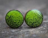 Lime Green/Black Enamel Stud Earrings (3/8 inch)