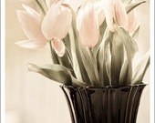Flower photography TULIPS pastel pink and cobalt neutral wall art fiesta ware vase