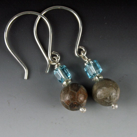 Round Petoskey Stone Earrings Jewelry Blue Crystal Squares