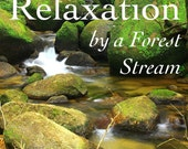 Calming Nature Sounds MP3 Relax By A Forest Stream