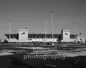 Ralph Wilson Stadium Black and White Photograph - Buffalo Bills, NFL, Football, Art Print, Photograph, Wall Art, gifts for him