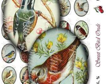 Sweet Bird 30x40 Ovals for cameo jewelry, buttons, pendants, scrapbooking, Collage - Sheet No 16, Instant Download