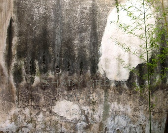 Nanjing Silk Factory Wall China ancient wall bamboo