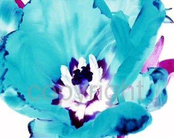 A6 Postcard size limited edition photograph of Blue Tulip (UK598/21p - 1/1)