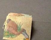 Miniature inch drawing Dodo Bird