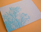 spring branches - letterpress card - set of 3
