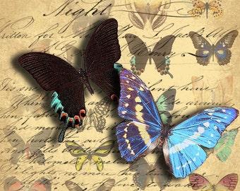 INSTANT DOWNLOAD Digital Collage Sheet Butterflies Images Set of 3 Digital Collage Sheets - DigitalPerfection Set