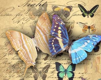 INSTANT DOWNLOAD Digital Collage Sheet Vintage Butterflies Images - DigitalPerfection digital collage sheet 007