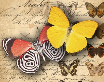 INSTANT DOWNLOAD Digital Collage Sheet Printable Butterflies Images - DigitalPerfection digital collage sheet 009