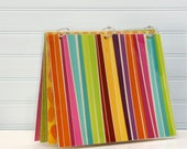Binder Notebook, 9 x 11, Bright Stripe