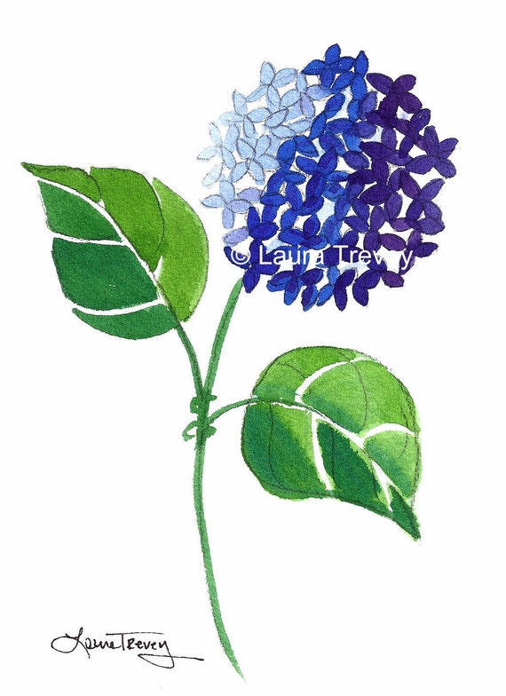 Blue Hydrangea Watercolor Print