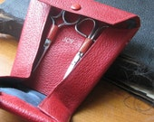 Vintage Scissors and Case