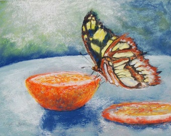 "SALE!! Snack Time - original butterfly pastel painting, 9 X 12"", framed"