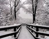 Black & White Landscape 4x6 Classic Snowfall Symmetry Black White Photography