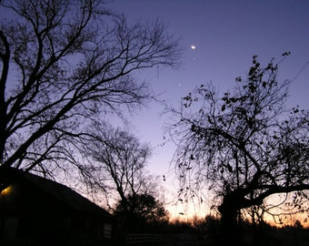 Three Planets and a Moon at Dawn 8x10 Fine Art Photograph