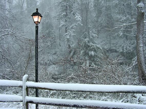 Narnia Lamp Post  8x10 Fine Art Winter Wonderland Photograph Snow Scene
