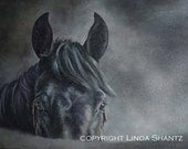 2012 Horse Art Calendar, Linda Shantz Fine Art