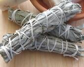 Three Sage Bundles