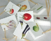 Fruit and Veg , Pack of 6 Assorted Gift Tags.