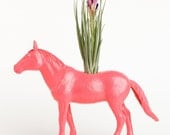 RESERVED for Dixie Horse Planter with Air Plant Room Decor