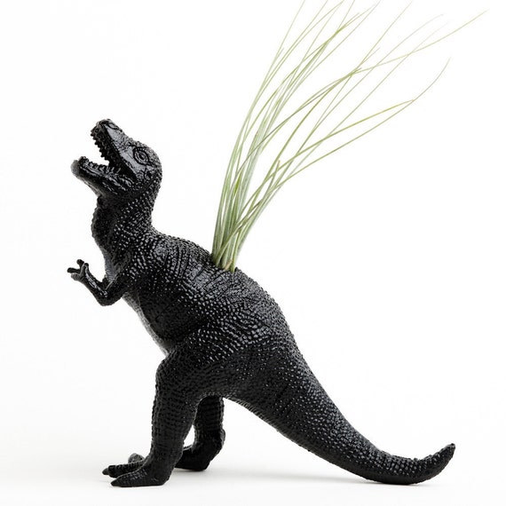 Black T Rex Dinosaur Planter with Air Plant Room Decor, College Dorm Ornament, Plants and Edibles, Repurposed Toy